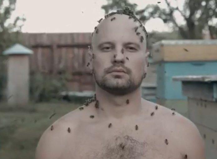 Рязанский пасечник снял видео, чтобы привлечь внимание к гибели пчёл