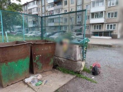 В мусорном баке в Красноярском крае нашли труп новорожденной девочки