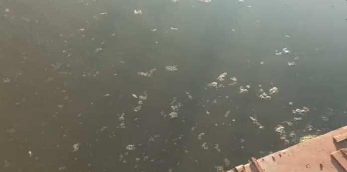 В Борковском затоне Рязани заметили странное грязевое пятно