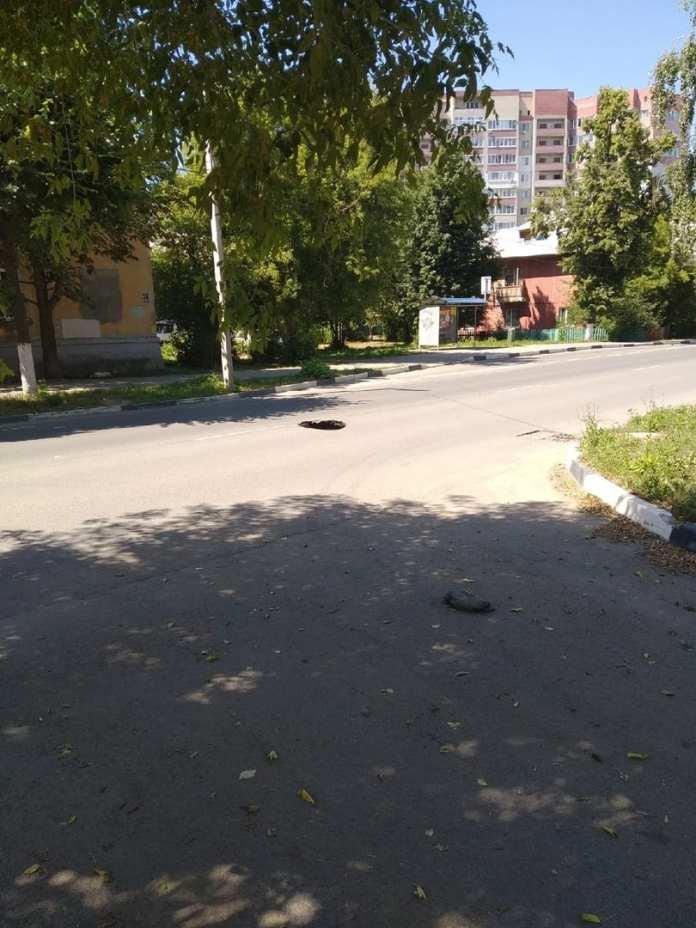 В Рязани провалился асфальт на улице Весенней
