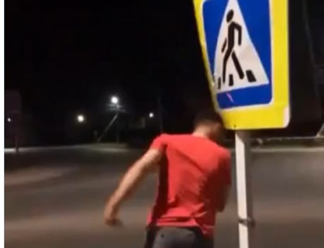 Пьяные воронежцы пытались забодать дорожный знак
