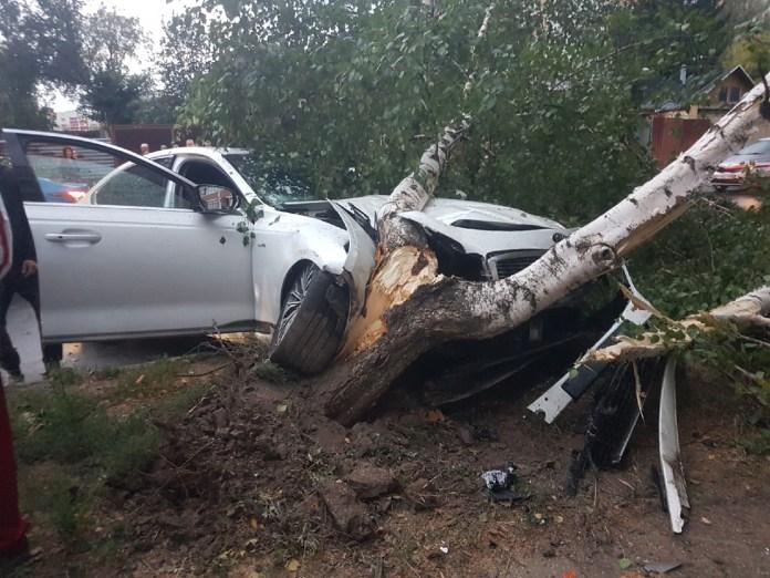 Пьяный водитель собрал три машины в центре Рязани и снёс берёзу