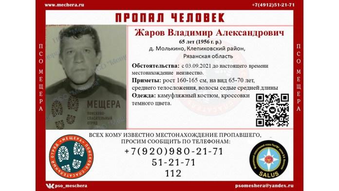 В Клепиковском районе пропал 65-летний мужчина