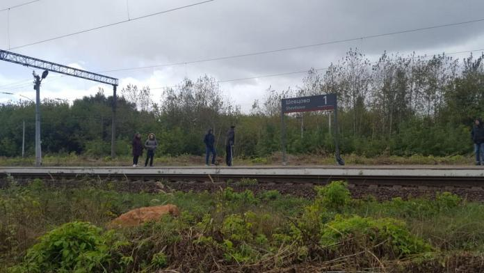 В Рязанском районе поезд сбил 39-летнего инвалида детства