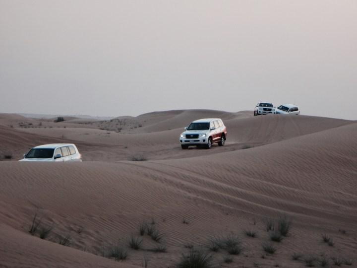 Dubai Safari Tour Wüste