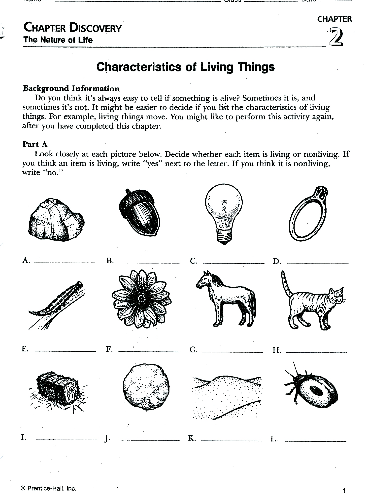 Printables Classifying Living Things Worksheet