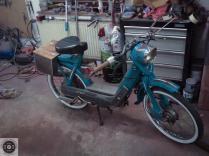 Rat_moped-33