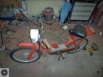 Rat_moped-8