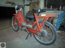 Rat_moped-9
