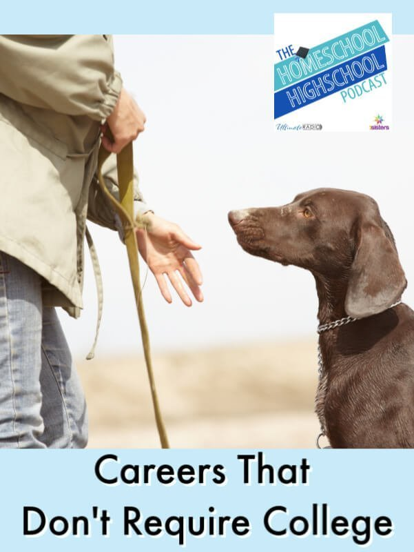 HSHSP Ep 186: Careers that Don't Require College, Interview with Susan Stewart. Some teens are not college-bound. Help them make the most of career exploration with this discussion of careers that don't require college. #HomeschoolHighSchoolPodcast #CareerExploration #CareersThatDontRequireCollege #NonCollegeBoundTeens #SusanStewart