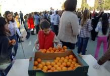 Consumo fruta en los colegios