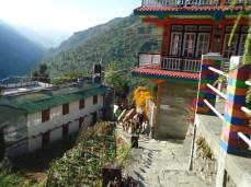 Refugios para turistas