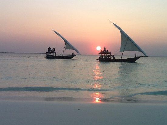 amazing-sunset-dhow-cruise