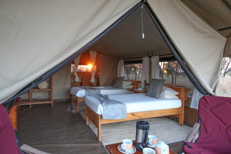 serengeti-wilderness