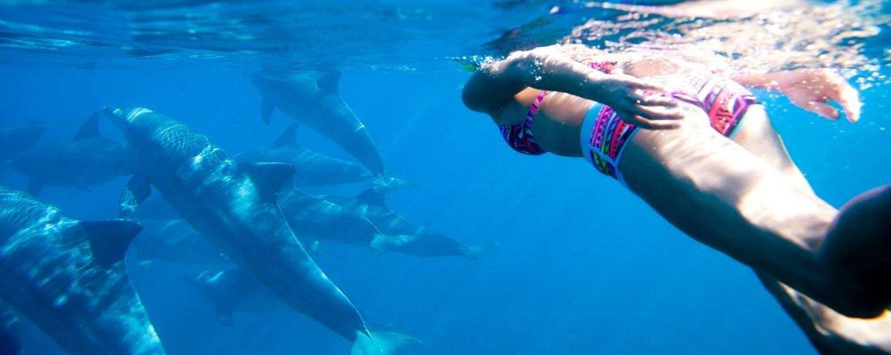 Zanzibar_SwimmingWithDolphin2