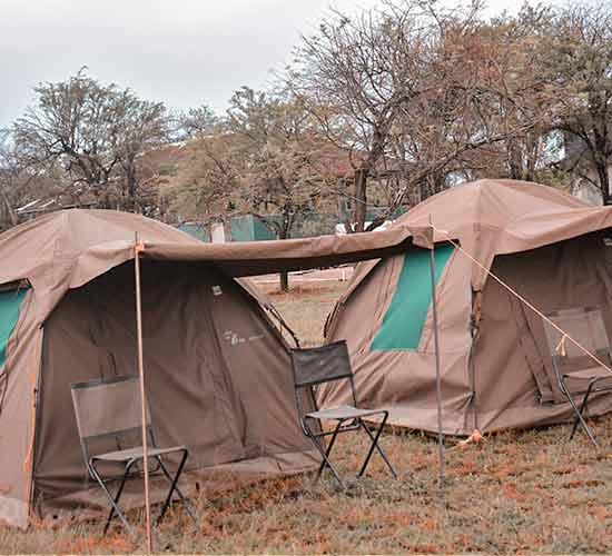 5-DAYS-TANZANIA-STANDARD-SAFARI