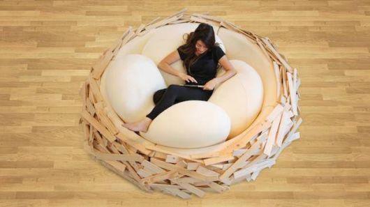 Relaxing In Bird Nests