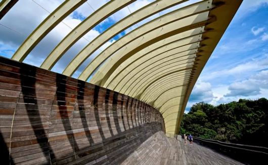 Henderson Waves Bridge In Singapore