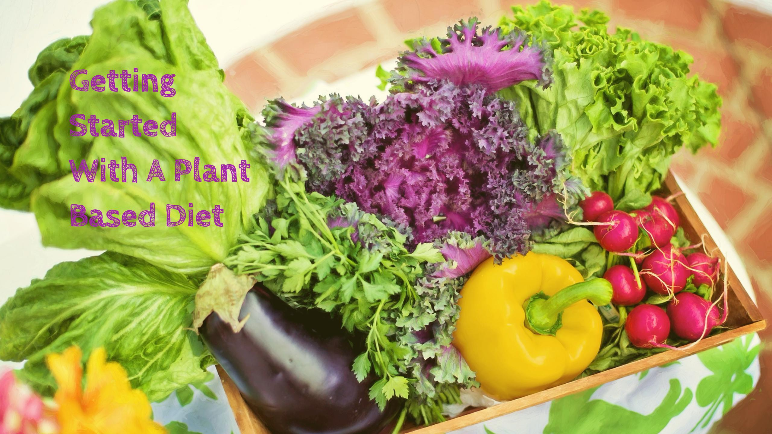 Getting Started with a Plant-Based Diet? Don't Worry