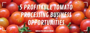 5 PROFITABLE TOMATO PROCESSING BUSINESS OPPORTUNITIES