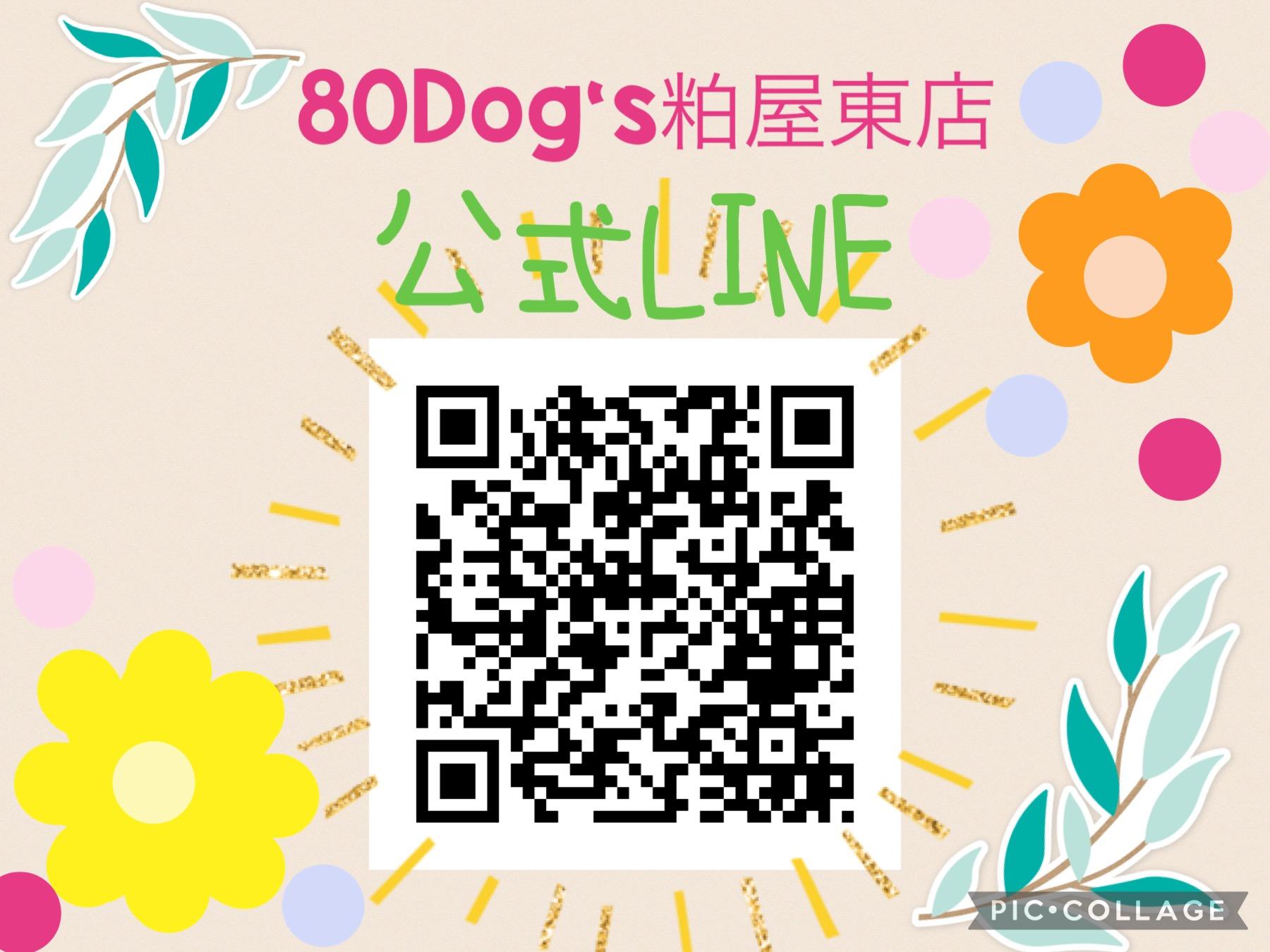 80Dog's粕屋東店公式LINE