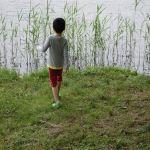 自閉症 障害児 親の心の格闘