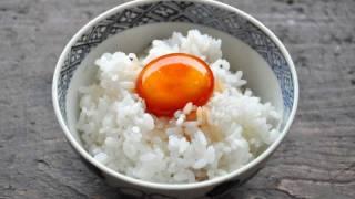 朝ごはんの安い店【すき家ver】