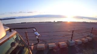 新潟から北海道へ行くフェリー【個室しかない豪華船】らべんだあ 遂に就航 雑魚寝とおさらば!