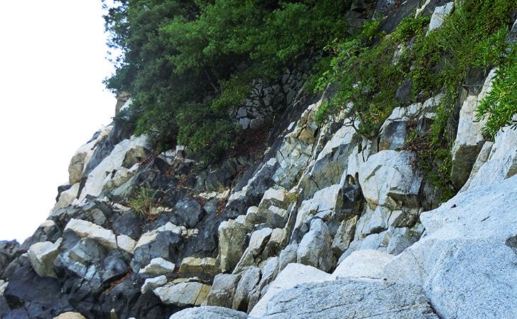 鹿浦越のランプロファイヤー岩脈