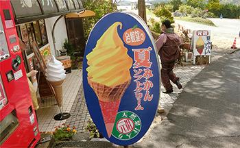 秋吉台の夏みかんソフトクリーム