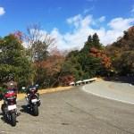 東かがわ・県道2号線
