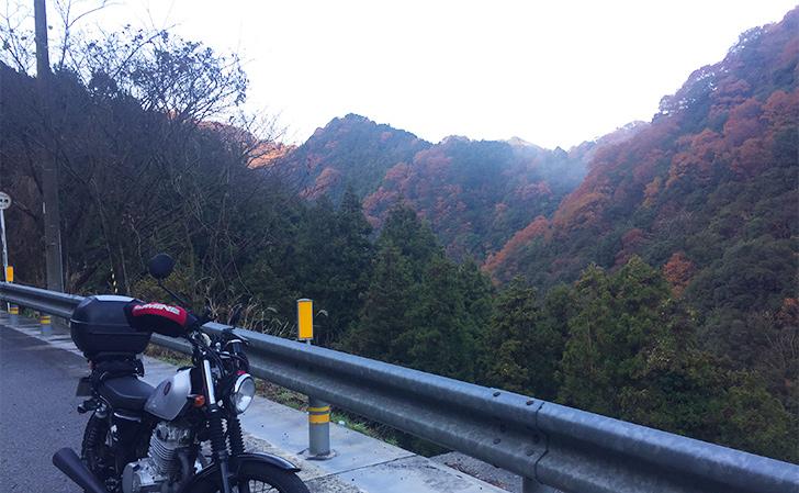国道11号線・松山から西条