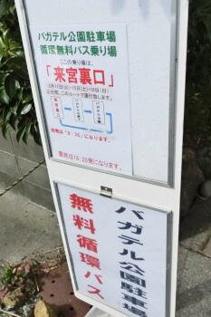 河津桜・静岡・無料バス