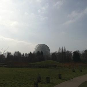 Jodrell Bank Gardens - view of the Lovell Telescope