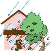 強風などでの倒木による隣家への損害