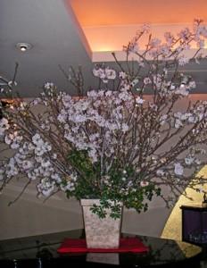吉野桜の活け込