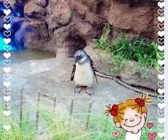 池袋キャバクラはちみつくろーばー れのん ペンギン