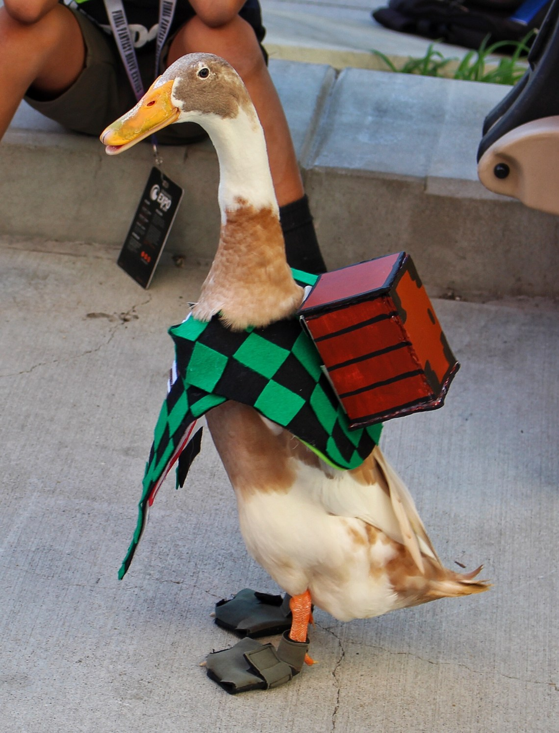 Tito the duck coplay Tanjiro Kamado Cruncyroll Expo 2019 8Bit/Digi