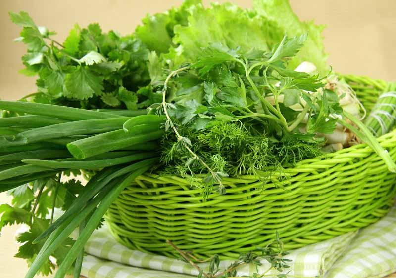 Зелень кормит, зелень лечит