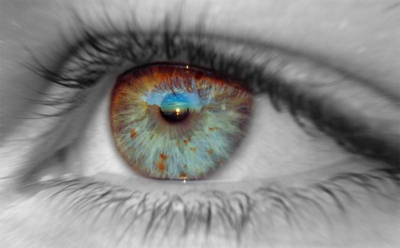 Чудо творения – глаз человека