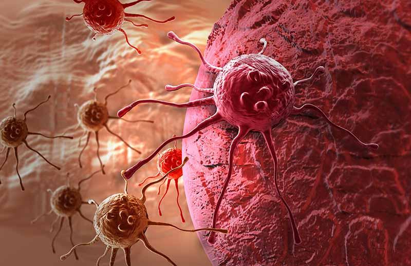 Рак можно победить