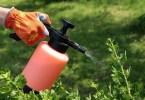 Борьба с вредителями: бытовые пестициды