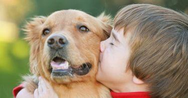 Психологи рекомендуют покупать детям домашних животных