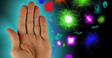 Чудесный механизм защиты – иммунная система