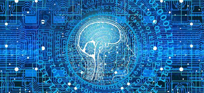 Удивительное устройство человеческого мозга
