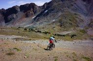 Alpine riding!