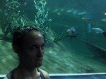 Sylvie von Duuglas-Ittu - Chiang Mai Aquarium