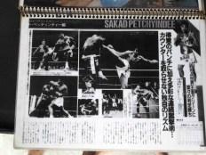 Sagat Petchyindee - Fighting in Japan