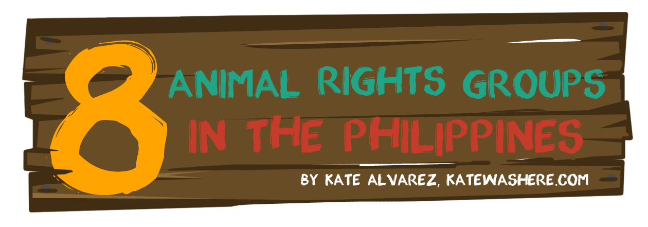 8 Animal Rights Groups in the Philippines