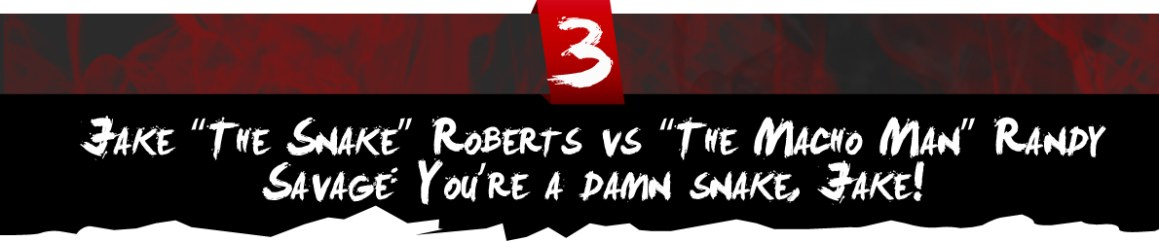 "Jake ""The Snake"" Roberts vs ""The Macho Man"" Randy Savage: You're a damn snake, Jake!"